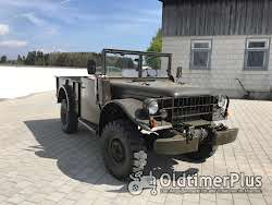 Dodge M 37 troop carrier