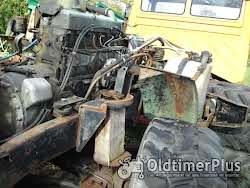 Daimlerbenz  Mercedes Motore OM 352, 314, 364, 366, 636, 616 Foto 6