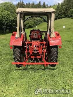 IHC Traktor Typ 353 Foto 3