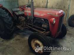 Massey Ferguson MF 35 Multi-Power