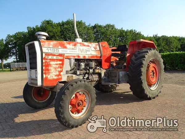Massey Ferguson 1195 Foto 1