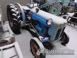 Fordson Dexta vigneron photo 2