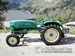 MAN 2L2 Tragschlepper / oldtimer Tractor - sehr schöner Zustand