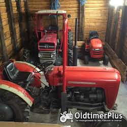 Massey Ferguson MF 35 Narrow Foto 2
