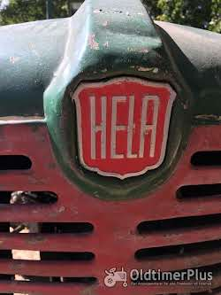 HELA D117 Foto 2