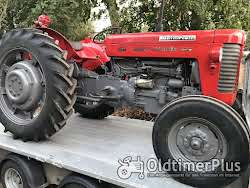 Massey Ferguson MF 65 Multi-Power