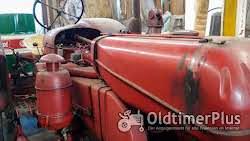 Porsche Diesel Master 419 Foto 10