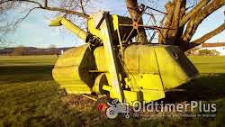 Claas Junior Foto 2