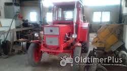 Ursus Universal/UTB 550 Traktor Foto 3