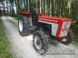 Hürlimann Traktoren die nicht jeder hat Foto 7