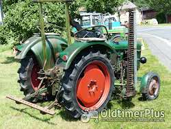 Deutz D 25 mit Messerbalken in Original Patina Oldtimer Schlepper Foto 4