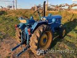 LANZ D3012(vineyard) Foto 6