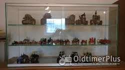 Modelle Glasvitrine mit diversen Modellen