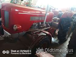 Schlüter S650 oder S400 mit Frontlader Foto 7