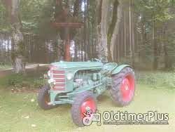 Hürlimann D60 Spezial Foto 5