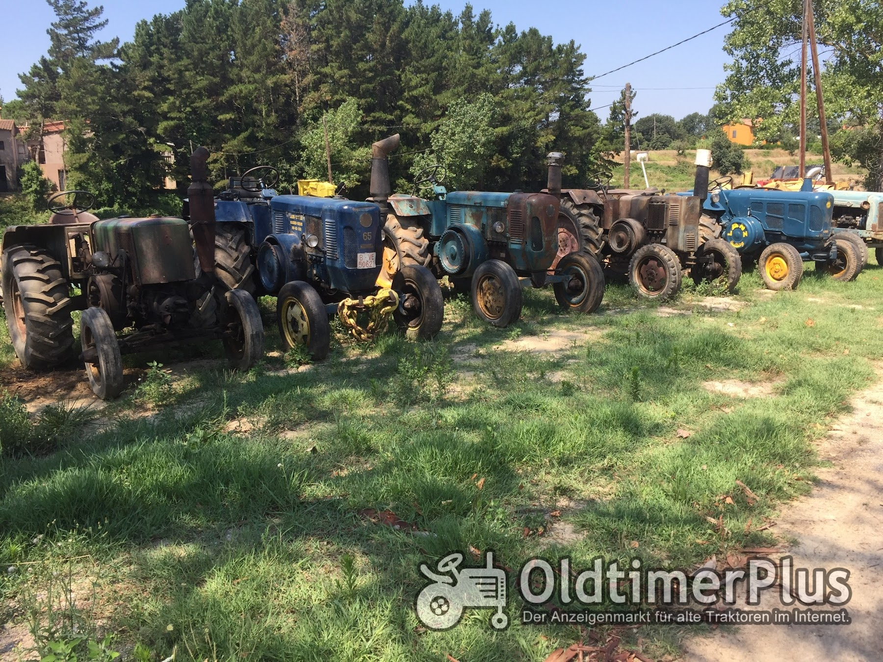 LANZ (Lot of 5 tractors)