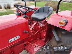 Farmall Cormick D439 gerestaureerd en gereviseerd, nieuwstaat Foto 2
