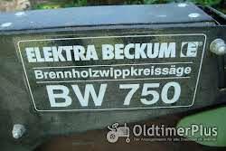 Werkzeug Brennholz-Wippkreissäge