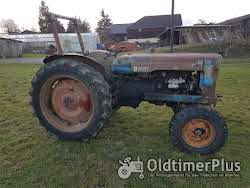Fordson Major Typ ESK Foto 3