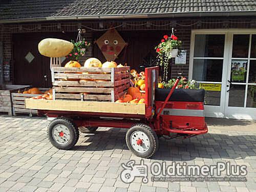 Güldner Hydrocar Foto 1