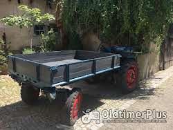 LANZ Alldog A1215