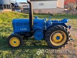LANZ D3012(vineyard) Foto 7