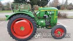 Deutz Traktor Deutz F1L514 Knubbeldeutz Foto 2