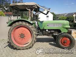 Fendt Farmer 2D, Typ FW 139, Bj 1967, 38 PS