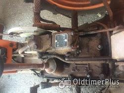 Fiat Oldtimer Schlepper Foto 4