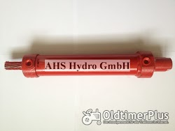 Calzoni Rcd. Ognibene IHC Lenkzylinder Case IH IHC Hydrostatic Foto 3