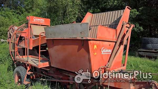 Grimme Europa Standard Foto 1