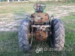 Steyr 80s(Schmalspurschlepper) Foto 6