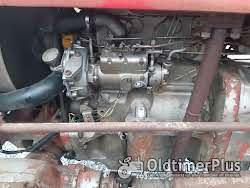Massey Ferguson 135 allrad 4x4