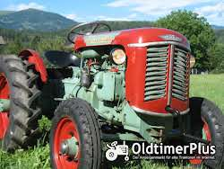Nuffield Field Boy R 300 DT Allrad, HURTH Allrad-Vorderachse Foto 6