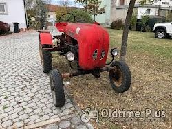 Porsche Hofherr-Schrantz Austro Junior