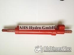 Calzoni Rcd. Ognibene Rima Case IHC Lenkzylinder 314G356 Lenkzylinder 3224285R92 IHC 544 bis 1046 Lenk Zylinder Foto 2