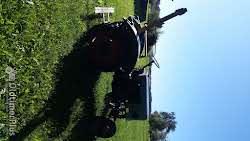 Eicher EKL 11 Oldtimer Bulldog,Traktor,Schlepper im absoluten Originalzustand!!! Foto 6