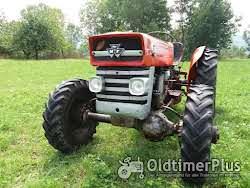 Massey Ferguson 135 Allrad
