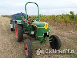 Deutz Oldtimer Traktor F2L612 photo 8