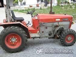 Sonstige Schanzlin Schmalspurallradschlepper leicht reparaturbedürftig Typ 803