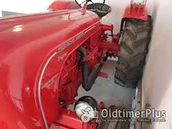 Allgaier Porsche Allgaier Super Diesel Foto 2