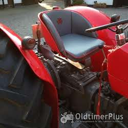 Massey Ferguson MF 135 Multipower foto 4