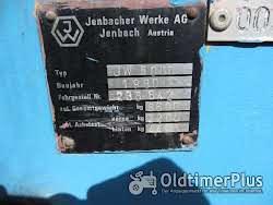 Jenbacher Büffel Foto 6