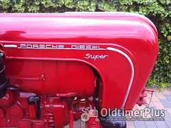 Porsche Diesel 308N Foto 7