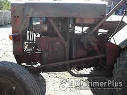 Stock Dieselschlepper mit Deutz F2M313 Motor Foto 2