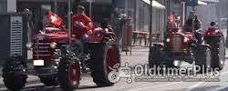 Lindner BF45 Allrad incl. Servolenkung Foto 3