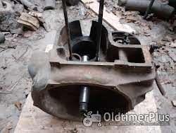 Hatz 1 Zylinder  11 ps  E89 ? Foto 3