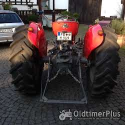 Massey Ferguson MF 135 Multipower foto 3