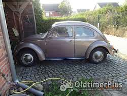 VW _ Käfer Ovali Export mit Faltdach Foto 12