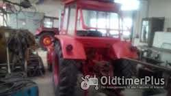 Ursus Universal/UTB 550 Traktor Foto 6